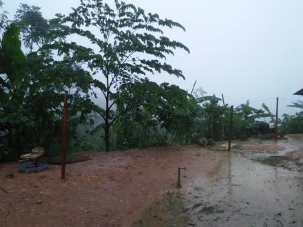 Sejak Kemarin Hingga Saat Ini Desa Puyung Masih Guyur Hujan